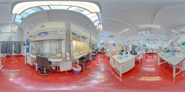 Thumbnail of Tissue Culture Lab